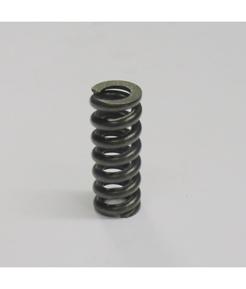 R909921846 A6VM28 PAINEJOUSI / PRESSURE SPRING